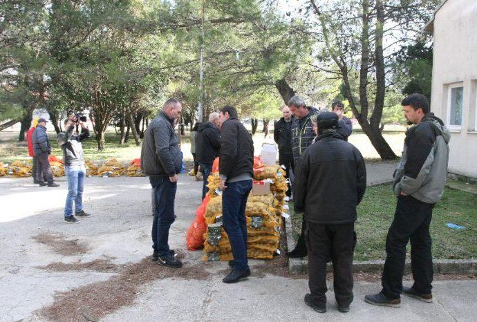 Agrarni fond obezbijedio sadni materijal za 40 poljoprivrednika