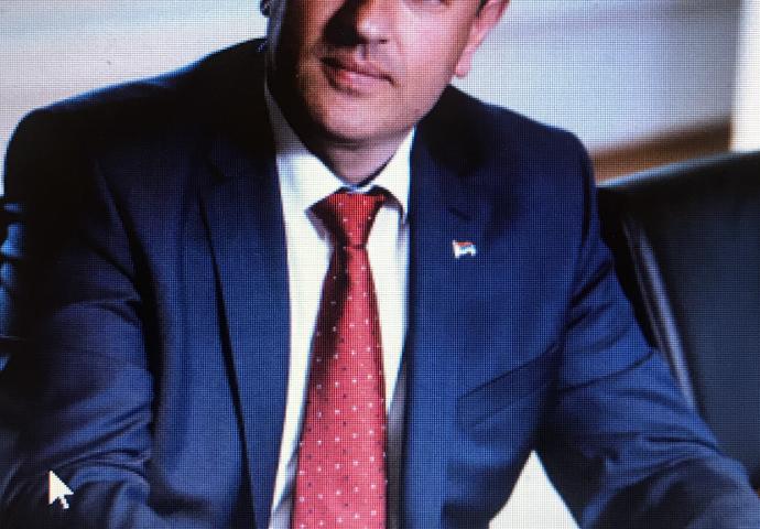 Petrović: U novom desetljeću novih 1.000 megavata električne energije