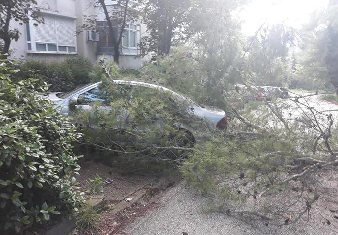 Jaka bura u Mostaru – stabla završila na automobilima