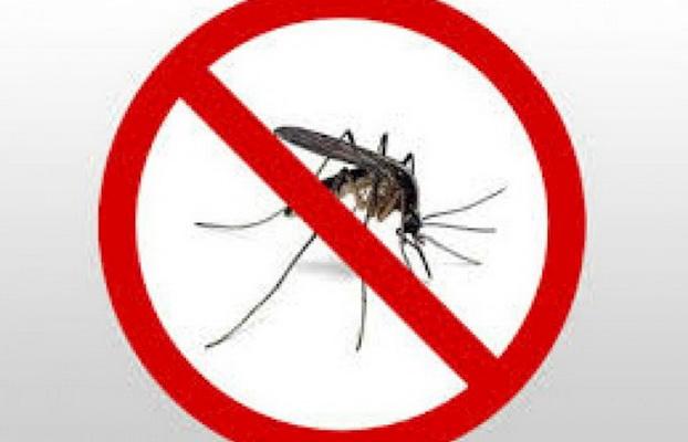U četvrtak i petak zaprašivanje protiv komaraca