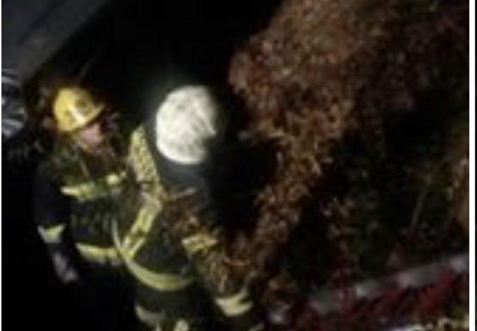 Saobraćajka kod Mostara: Vatrogasci izvlačili povrijeđene