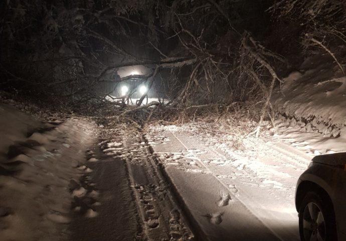 Sniježna  mećava na putu Tjentište – Foča : Drvo prepriječilo put u Prijeđelu