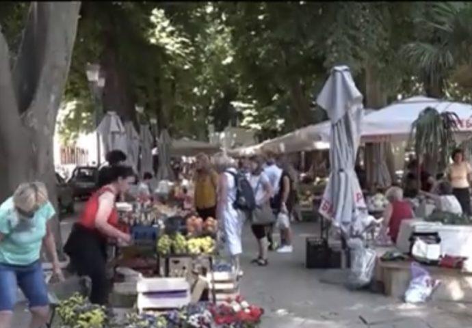 VIDEO: Trebinjka uzgaja cvijetni raj